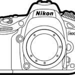 Comprar camara de fotos para colorear