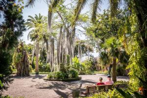 Comprar jardin botanico