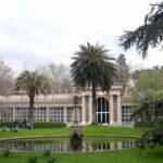 Comprar jardin botanico madrid